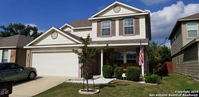 11927 Dove Ranch, San Antonio, TX 78254 (MLS #1355175) :: Alexis Weigand Real Estate Group