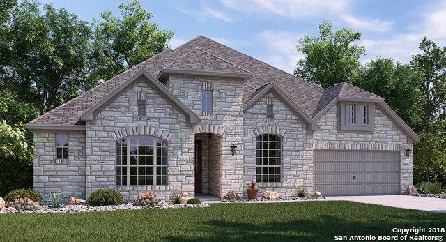 29018 Porch Swing, Boerne, TX 78006 (MLS #1355528) :: Exquisite Properties, LLC
