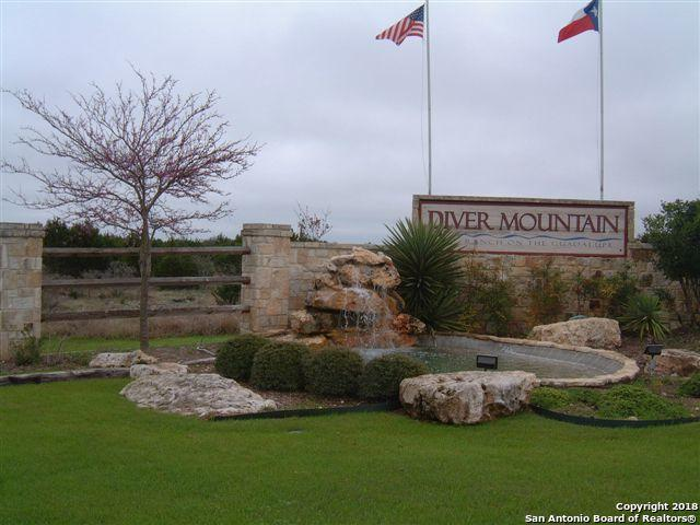 108 White Oak Trail, Boerne, TX 78006 (MLS #1355542) :: Neal & Neal Team