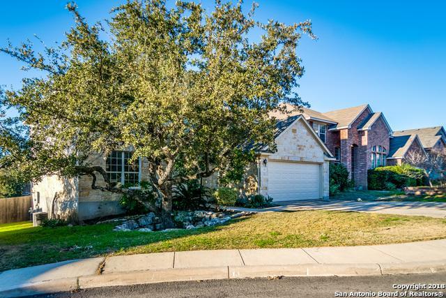 1211 El Riachuelo, San Antonio, TX 78258 (MLS #1355683) :: Tom White Group