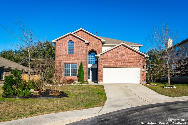 25606 Bottle Brush, San Antonio, TX 78261 (MLS #1355695) :: Neal & Neal Team