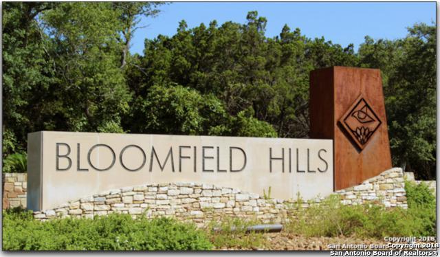 20702 Blue Quail Run, San Antonio, TX 78256 (MLS #1355816) :: Exquisite Properties, LLC