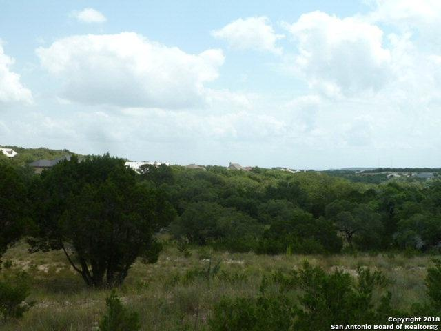 1929 Split Mtn, Canyon Lake, TX 78133 (#1355837) :: The Perry Henderson Group at Berkshire Hathaway Texas Realty
