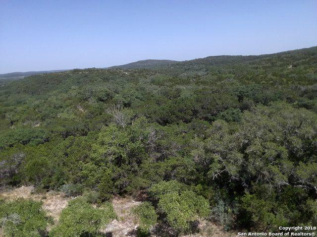 2040 Park Rd 37, Helotes, TX 78023 (MLS #1355994) :: Alexis Weigand Real Estate Group
