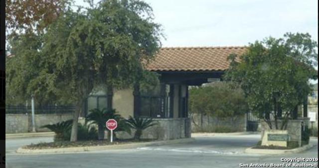 25034 Estancia Circle, San Antonio, TX 78260 (MLS #1356301) :: Tom White Group
