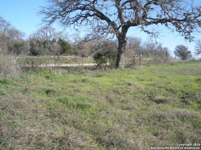 TBD Mulecreek Road, Harwood, TX 78632 (MLS #1356421) :: Alexis Weigand Real Estate Group
