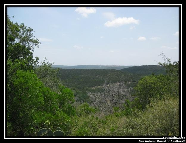 LOT 256 Cr 2744, Mico, TX 78063 (MLS #1356777) :: Exquisite Properties, LLC
