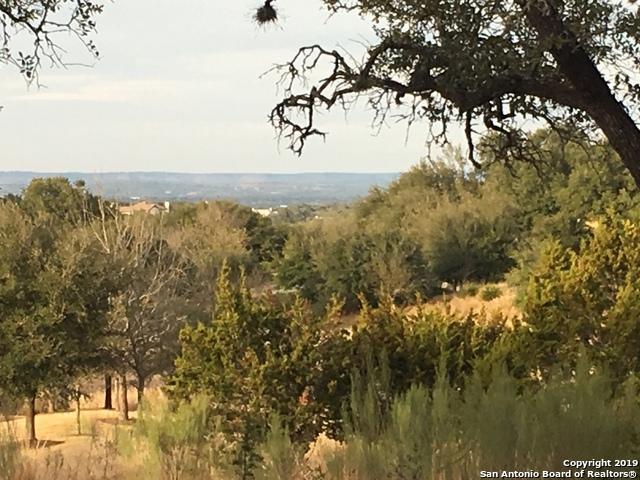 LOT 30 Alberi Ln, Boerne, TX 78006 (MLS #1357148) :: Exquisite Properties, LLC