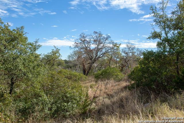 23826 Carina Canyon - Photo 1