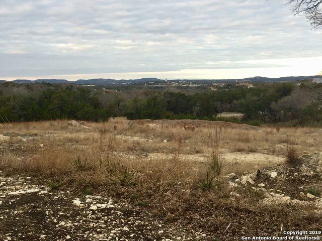 122 Peach Springs, Boerne, TX 78006 (MLS #1357597) :: Exquisite Properties, LLC