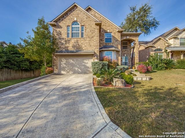 25207 4 Iron Ct, San Antonio, TX 78260 (MLS #1357847) :: Tom White Group