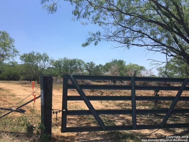 14342 E Loop 1604 S, San Antonio, TX 78223 (MLS #1358032) :: Tom White Group