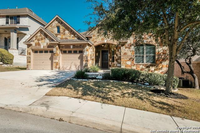 23810 Viento Oaks, San Antonio, TX 78260 (MLS #1358274) :: Tom White Group