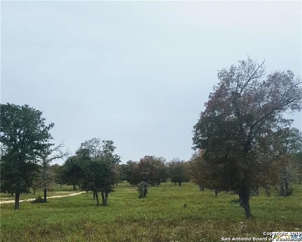 1077 Flash Circle, Luling, TX 78648 (MLS #1358356) :: Magnolia Realty
