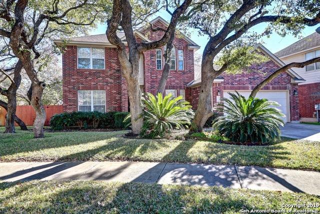 1110 Calico Spring, San Antonio, TX 78258 (MLS #1358501) :: Exquisite Properties, LLC