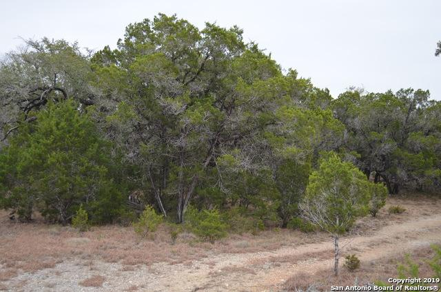 TBD Agave Ct, Wimberley, TX 78676 (MLS #1358842) :: Magnolia Realty