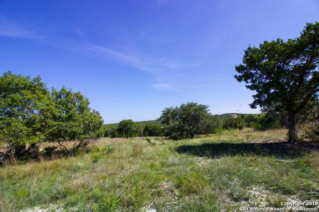 73 Table Rock, Boerne, TX 78006 (MLS #1358925) :: NewHomePrograms.com LLC