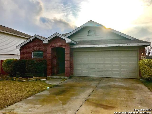 10203 Crystal View, Universal City, TX 78148 (MLS #1358966) :: Alexis Weigand Real Estate Group