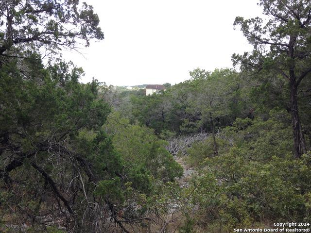 19354 Strauss, San Antonio, TX 78256 (MLS #1359032) :: The Lugo Group