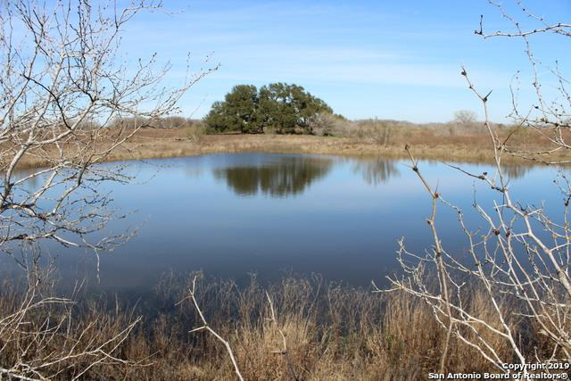 TBD County Road 427, Stockdale, TX 78160 (MLS #1359186) :: Vivid Realty