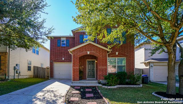 16115 Ambush Grove, San Antonio, TX 78247 (MLS #1359408) :: Alexis Weigand Real Estate Group