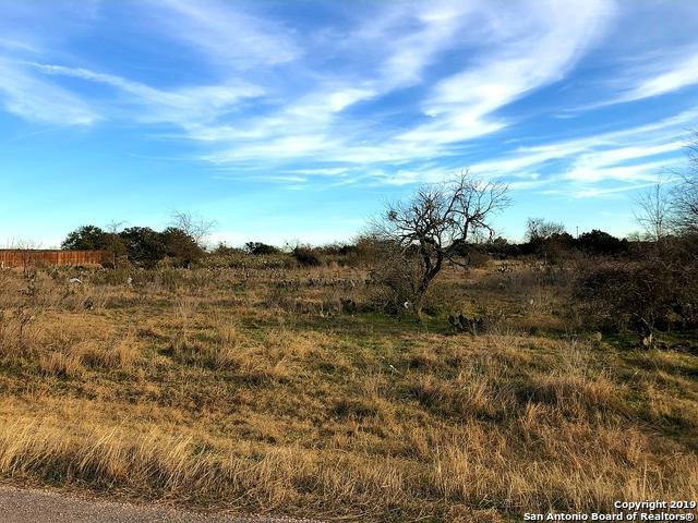 1120 Morning Glen, Spring Branch, TX 78070 (MLS #1359642) :: Alexis Weigand Real Estate Group