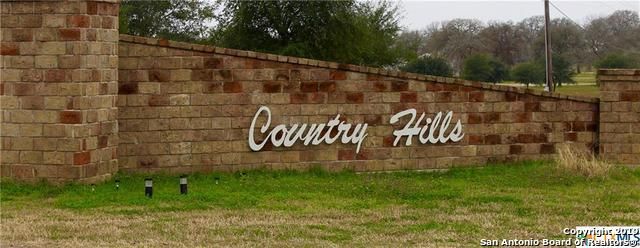 1169 Country View Dr, La Vernia, TX 78121 (MLS #1359883) :: Erin Caraway Group