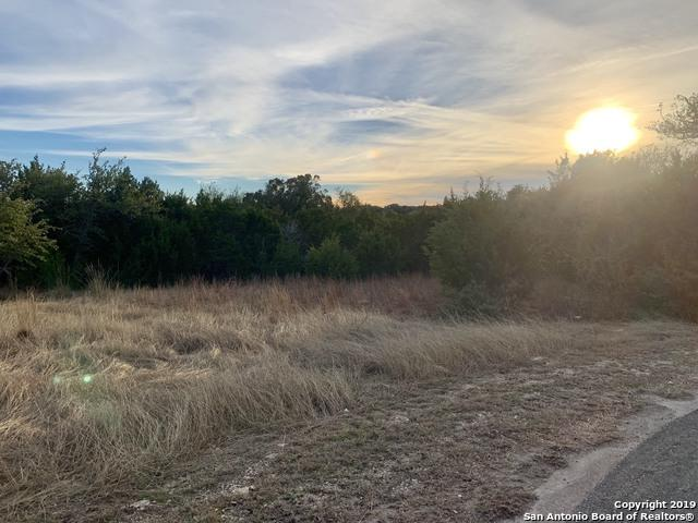 106 Cielo Vista, Canyon Lake, TX 78133 (MLS #1360097) :: BHGRE HomeCity