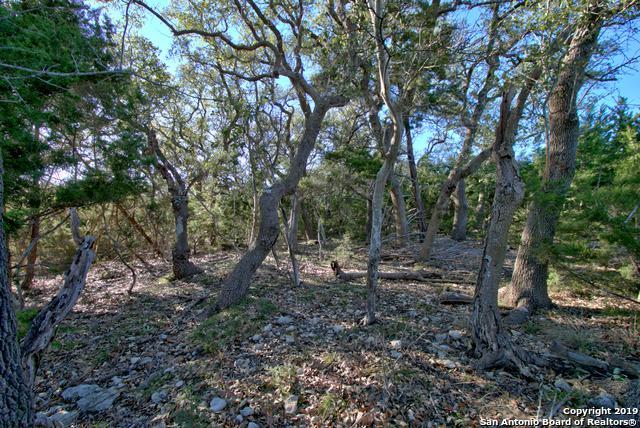 165 Champions Ridge, Spring Branch, TX 78070 (MLS #1360418) :: Tom White Group