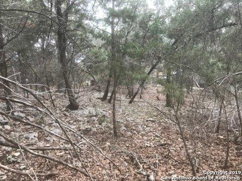 LOT 224 River Forest Dr, Boerne, TX 78006 (MLS #1360459) :: Exquisite Properties, LLC