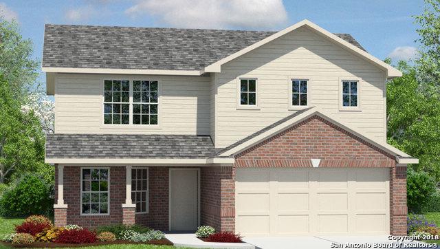 2481 Mccrae, New Braunfels, TX 78130 (MLS #1360466) :: ForSaleSanAntonioHomes.com