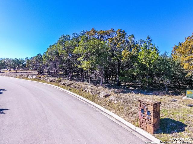 634 Didgeridoo Trl, New Braunfels, TX 78132 (MLS #1360553) :: Alexis Weigand Real Estate Group