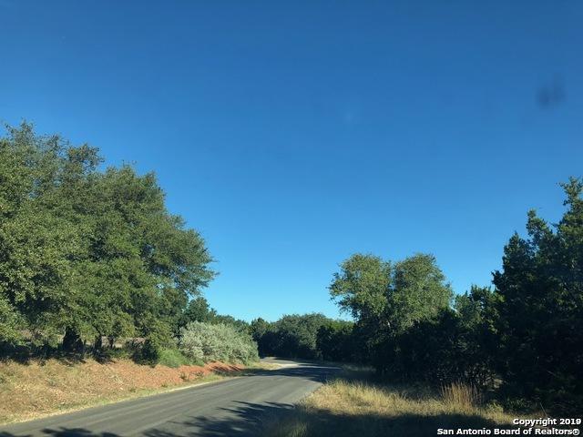 142 Water Oak Ln, Canyon Lake, TX 78133 (MLS #1360786) :: ForSaleSanAntonioHomes.com