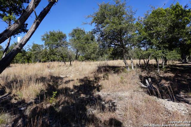 125 Sendera Way, Canyon Lake, TX 78133 (MLS #1360792) :: Erin Caraway Group