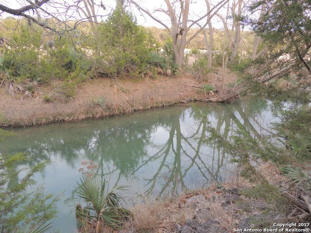 439 Rittimann Rd, Spring Branch, TX 78070 (MLS #1360822) :: Tom White Group
