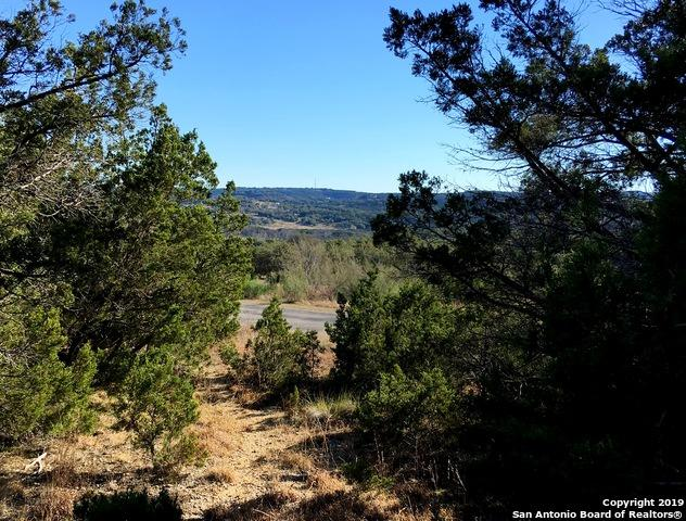 119 Sendera Way, Canyon Lake, TX 78133 (MLS #1360890) :: Alexis Weigand Real Estate Group