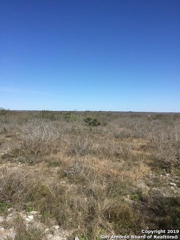 000 County Road 652, Devine, TX 78016 (MLS #1360972) :: ForSaleSanAntonioHomes.com