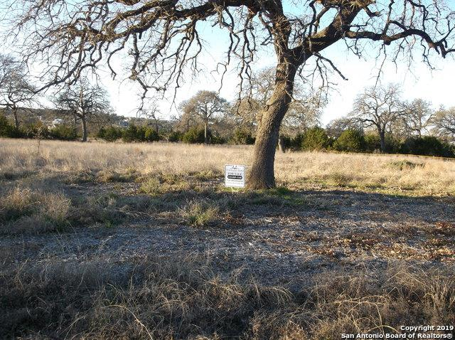 LOT 1659 Curvatura & Clove Hitch, New Braunfels, TX 78132 (MLS #1361150) :: Tom White Group
