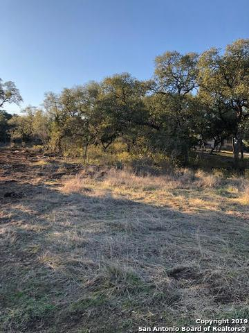 115 Winding View, New Braunfels, TX 78132 (MLS #1361296) :: Vivid Realty