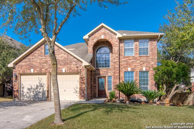 1619 Heavens Peak, San Antonio, TX 78258 (MLS #1361308) :: Alexis Weigand Real Estate Group
