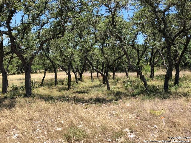 1724 (LOT 1569) Chardonnay, New Braunfels, TX 78132 (MLS #1361348) :: Neal & Neal Team