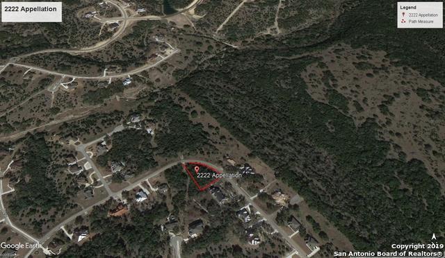 2222 Appellation, New Braunfels, TX 78132 (MLS #1361349) :: ForSaleSanAntonioHomes.com