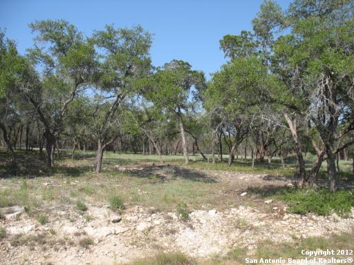 504 Cielo Vista, Canyon Lake, TX 78133 (MLS #1361596) :: Magnolia Realty