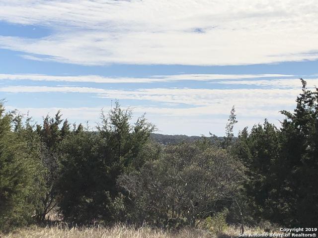 2225 (LOT 768) Pinot Blanc, New Braunfels, TX 78132 (MLS #1361938) :: Neal & Neal Team