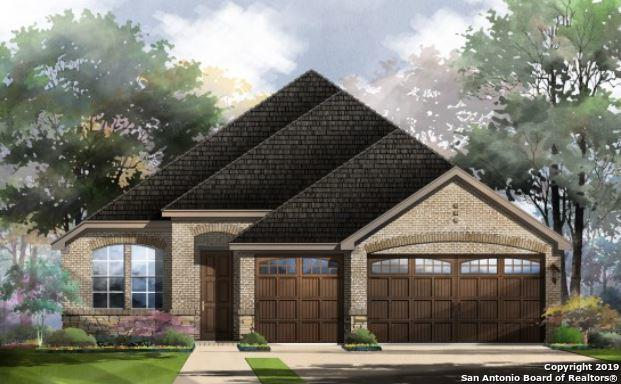 21 Mariposa Pkwy, Boerne, TX 78006 (MLS #1361970) :: The Mullen Group | RE/MAX Access