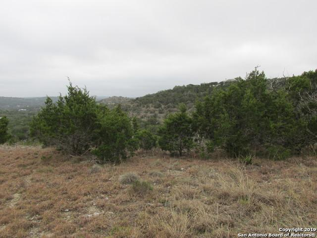 6440 Preakness Pass, Bulverde, TX 78163 (MLS #1361973) :: Alexis Weigand Real Estate Group