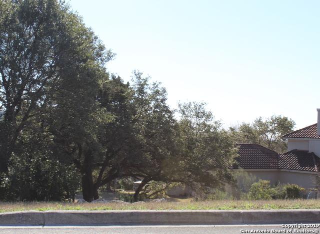 16 Arnold Palmer, San Antonio, TX 78257 (MLS #1362062) :: The Castillo Group