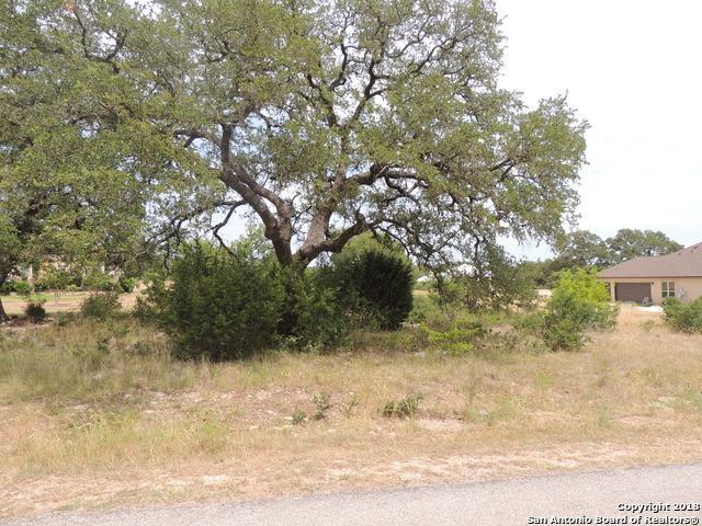 1166 Sapling Spring, New Braunfels, TX 78132 (MLS #1362130) :: Neal & Neal Team