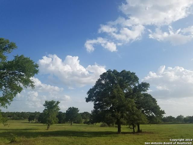 552 Fm 1209, Bastrop, TX 78602 (MLS #1362186) :: The Mullen Group | RE/MAX Access