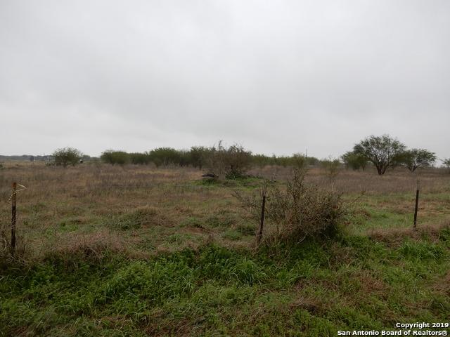 3620 County Road 405, Floresville, TX 78114 (MLS #1362296) :: The Castillo Group
